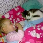 aaaaaa Poes snoepie slaapt ook op bed 24-02-2008